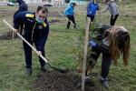 """""""Plant a tree – give a new life"""""""